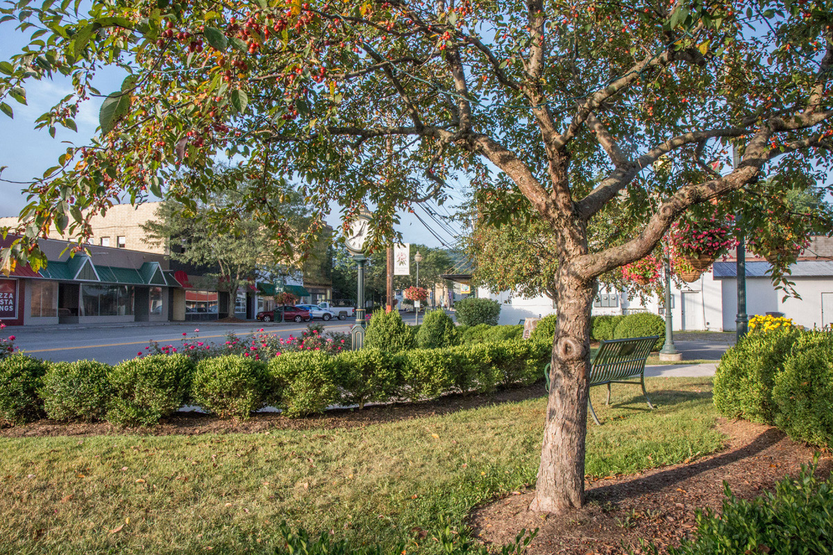 Main Street White Sulphur Springs